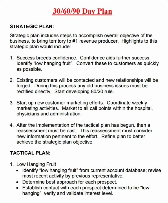 90 Day Action Plan Template Lovely 20 Sample 30 60 90 Day Plan Templates In Google Docs