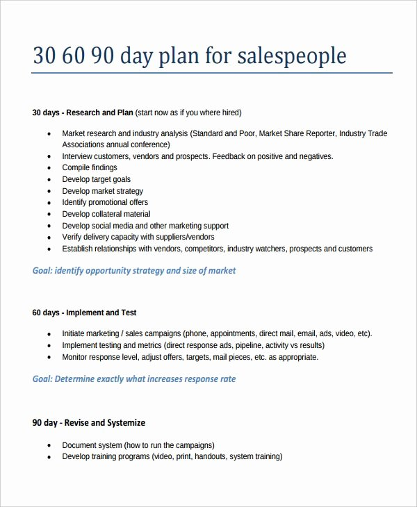 90 Day Action Plan Template Luxury 30 60 90 Day Sales Plan Template Template