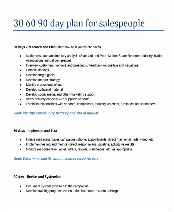90 Day Action Plan Templates New 22 30 60 90 Day Action Plan Templates Free Pdf Word