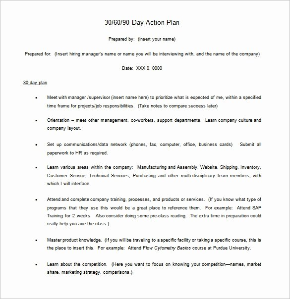 90 Days Action Plan Template Beautiful 30 60 90 Day Action Plan Template