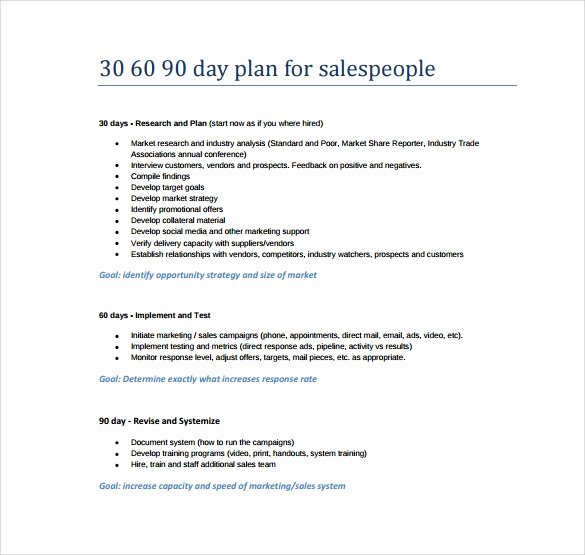 90 Days Action Plan Template Elegant 20 Sample 30 60 90 Day Plan Templates In Google Docs