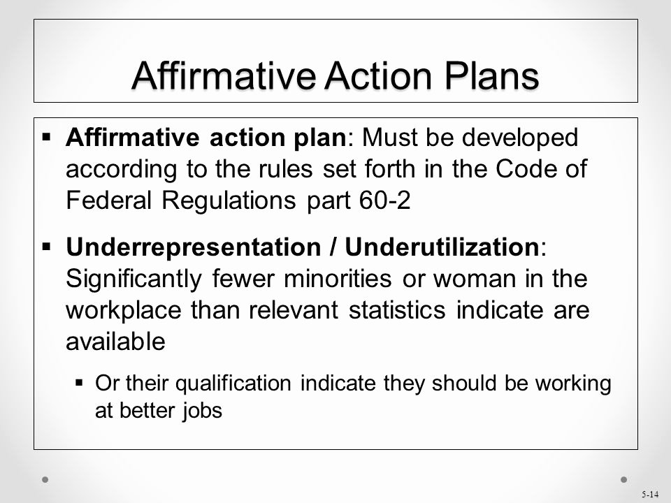 Affirmative Action Plan Template Awesome Chapter 5 Affirmative Action Ppt