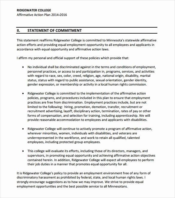 Affirmative Action Plan Template Beautiful Sample Affirmative Action Plan 9 Documents In Pdf Word