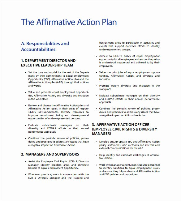 Affirmative Action Plan Template Inspirational Affirmative Action Plan Template 9 Download Documents