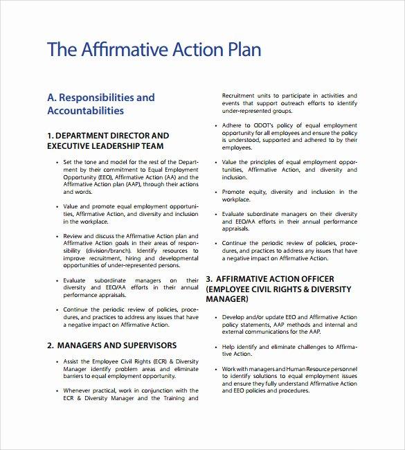 Affirmative Action Plan Template Inspirational Affirmative Action Plan Template 9 Download Documents