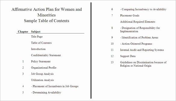 Affirmative Action Plan Template Inspirational How to Create An Affirmative Action Plan Tutorial