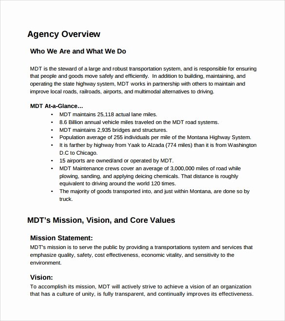 Affirmative Action Plan Template Lovely Sample Affirmative Action Plan 9 Documents In Pdf Word