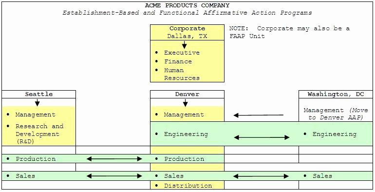 Affirmative Action Plan Template Unique Functional Affirmative Action Plan Process Update