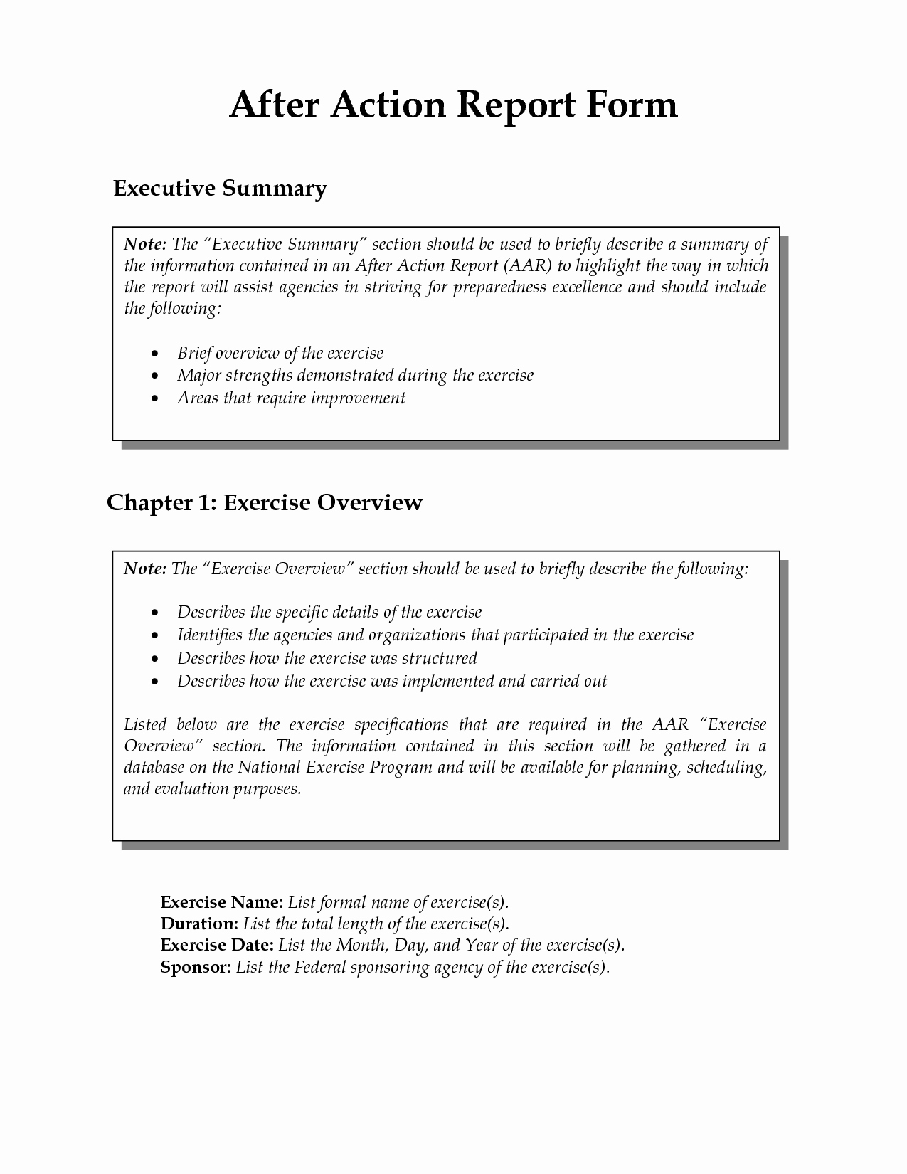 After Action Report Template Unique after Action Report Template