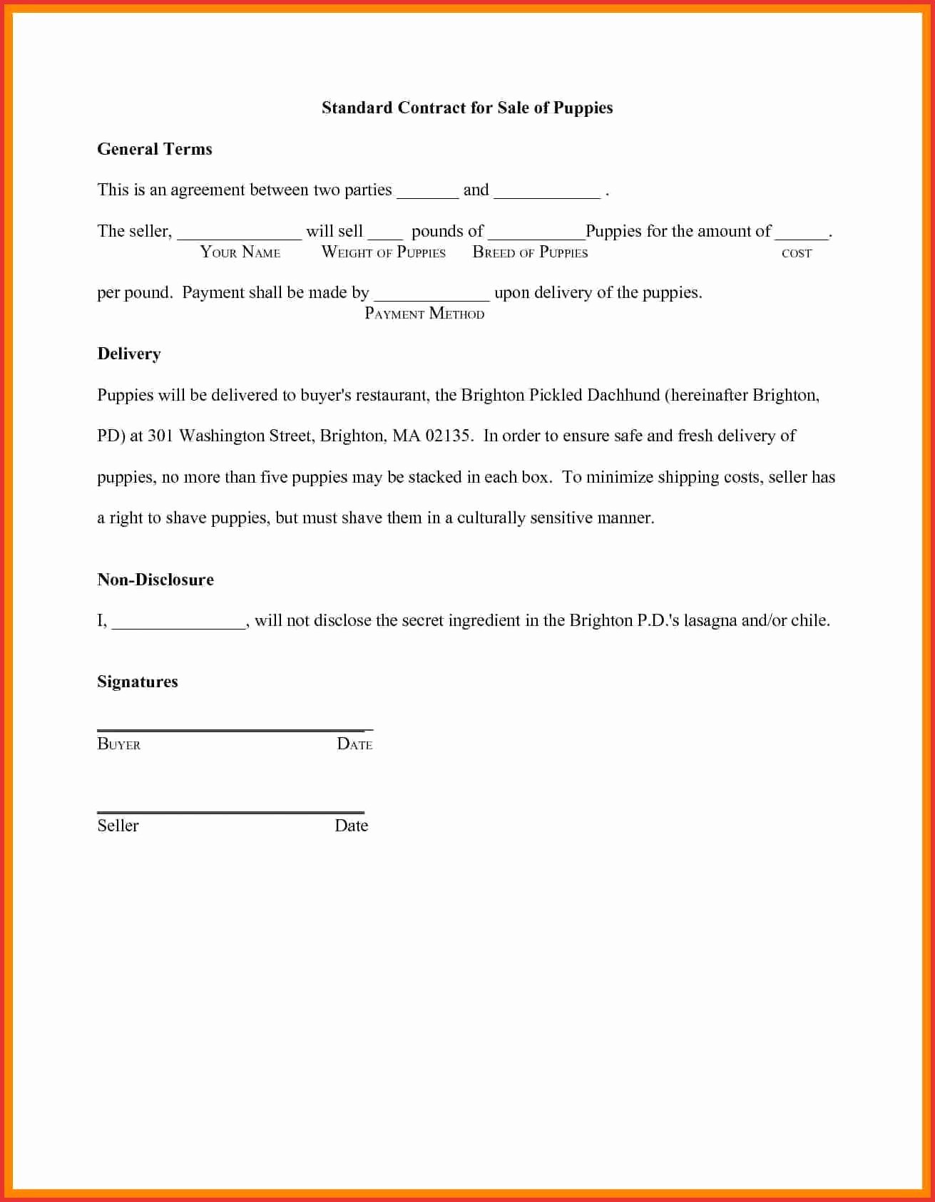 Agreement Template Between Two Parties Awesome Letter Agreement Template Between Two Parties Examples