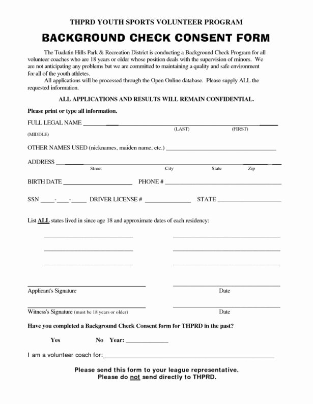 Background Check form Template Lovely Background Check form Template
