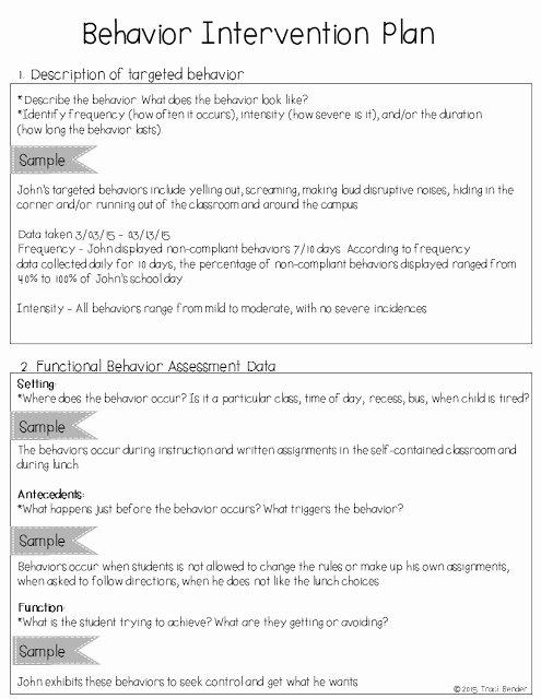 Behavior Intervention Plan Template Elegant the Bender Bunch Creating A Behavior Intervention Plan Bip
