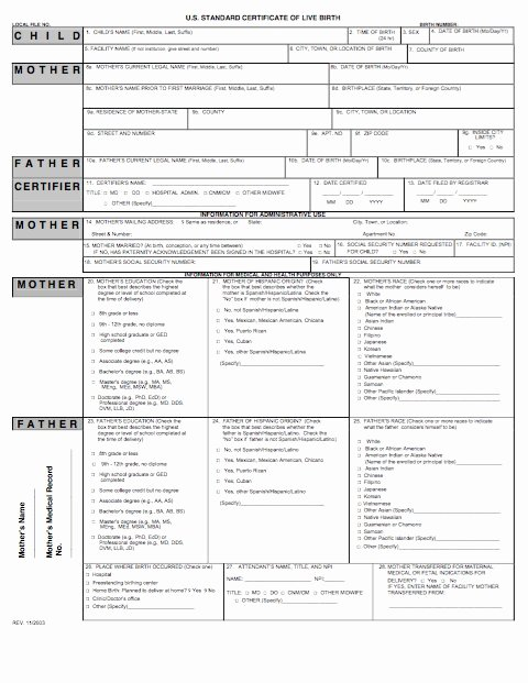 Birth Certificate Template Word Awesome 15 Birth Certificate Templates Word & Pdf Free