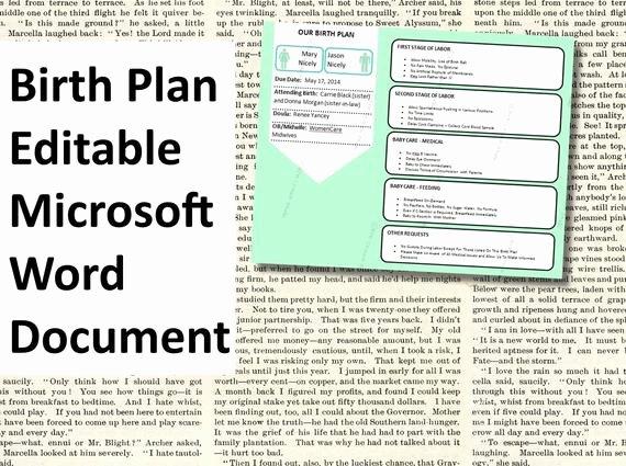 Birth Plan Template Word Document Beautiful Items Similar to Printable Birth Plan Template Editable