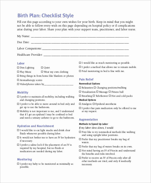 Birth Plan Template Word Document New Sample Birth Plan 11 Examples In Pdf Word