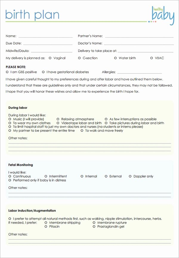 Birth Plan Template Word Document Unique Free 23 Sample Birth Plan Templates In Pdf Word