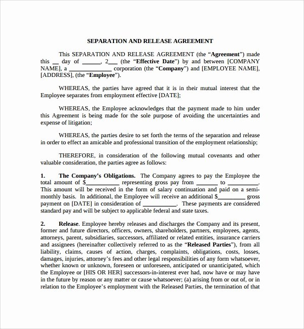 Business Separation Agreement Template Unique 6 Business Separation Agreements