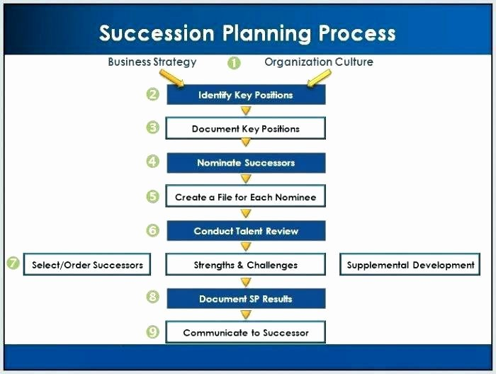 Business Succession Plan Template Beautiful Sample Succession Plan Template – Sample Succession