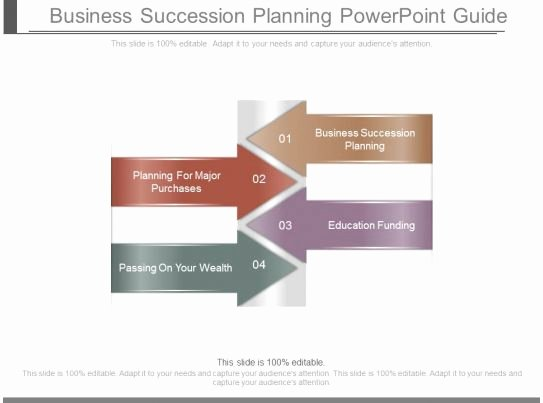 Business Succession Plan Template Best Of Business Succession Planning Powerpoint Guide