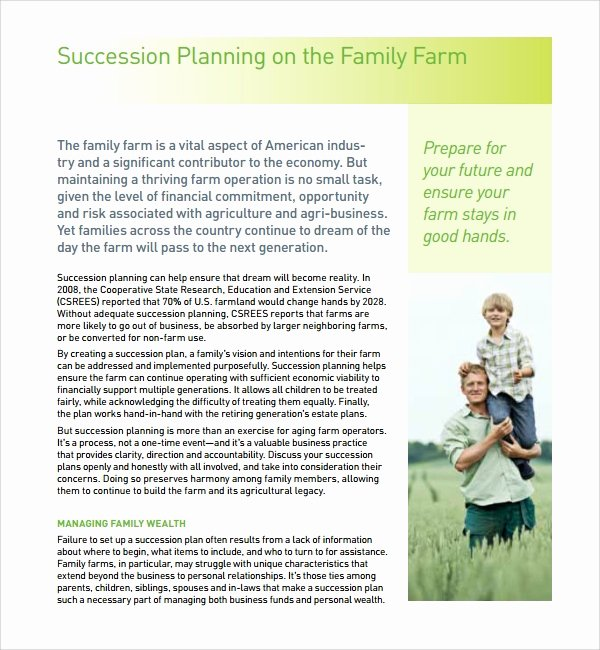 Business Succession Plan Template Best Of Sample Succession Planning Template 9 Free Documents In