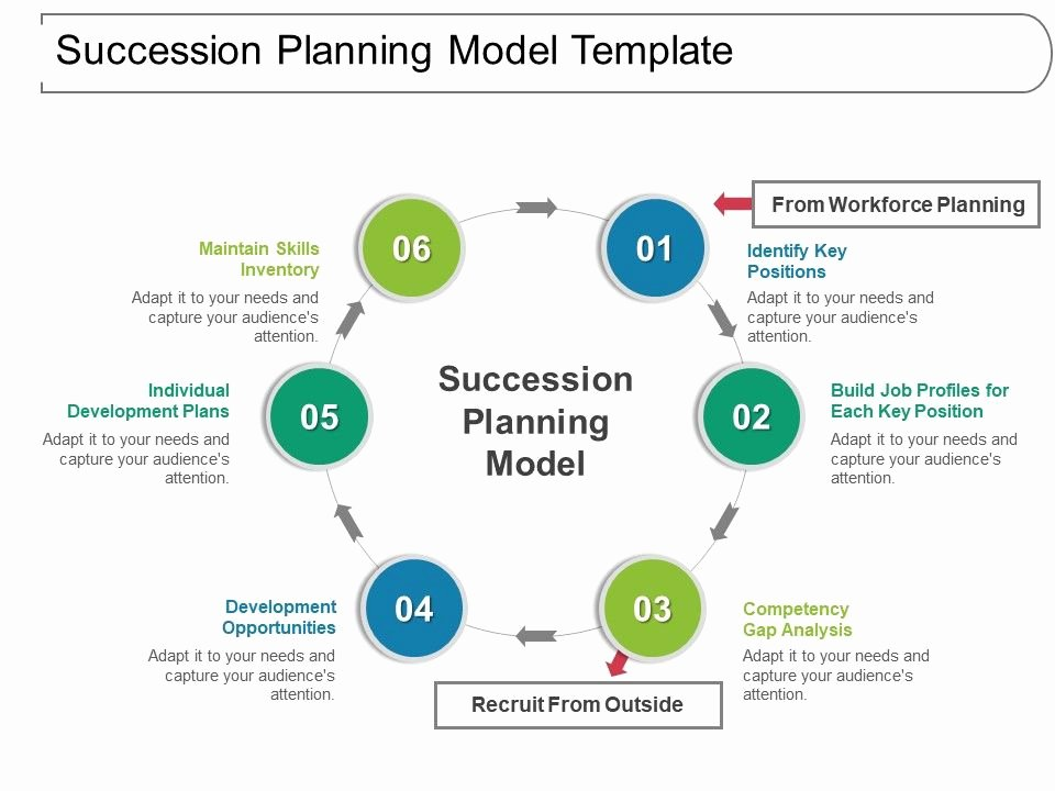 Business Succession Plan Template Lovely Succession Planning Model Template Ppt Inspiration