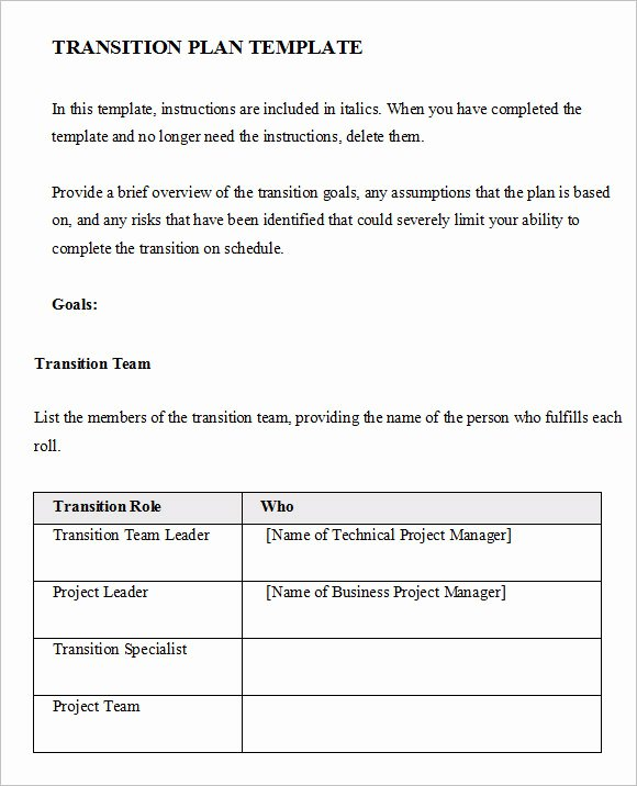 Business Transition Plan Template Unique Free 7 Transition Plan In Samples Examples format
