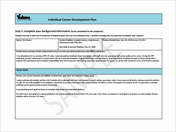 Career Path Planning Template Awesome Career Development Plan Template 11 Free Word Pdf