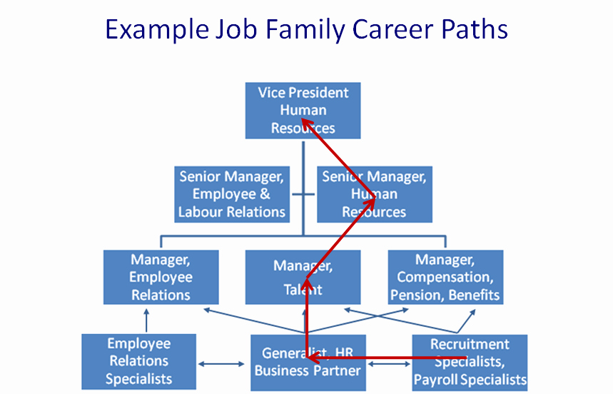 Career Path Planning Template Beautiful the Petency Based Management Blog Framework for