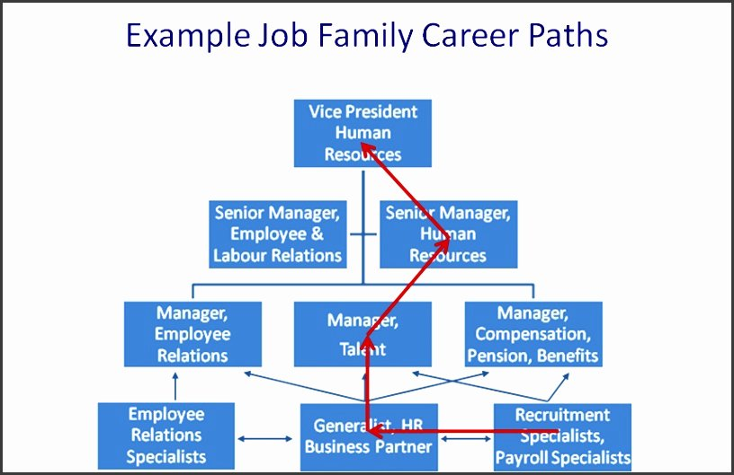 Career Path Planning Template Fresh 7 Career Path Template for Employee Sampletemplatess