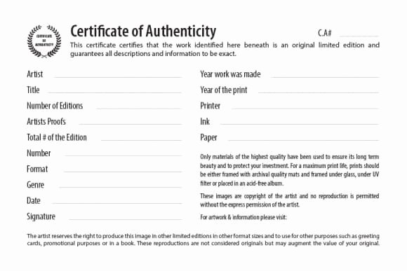 Certificate Of Authenticity Template Free Elegant Certificates Of Authenticity Template