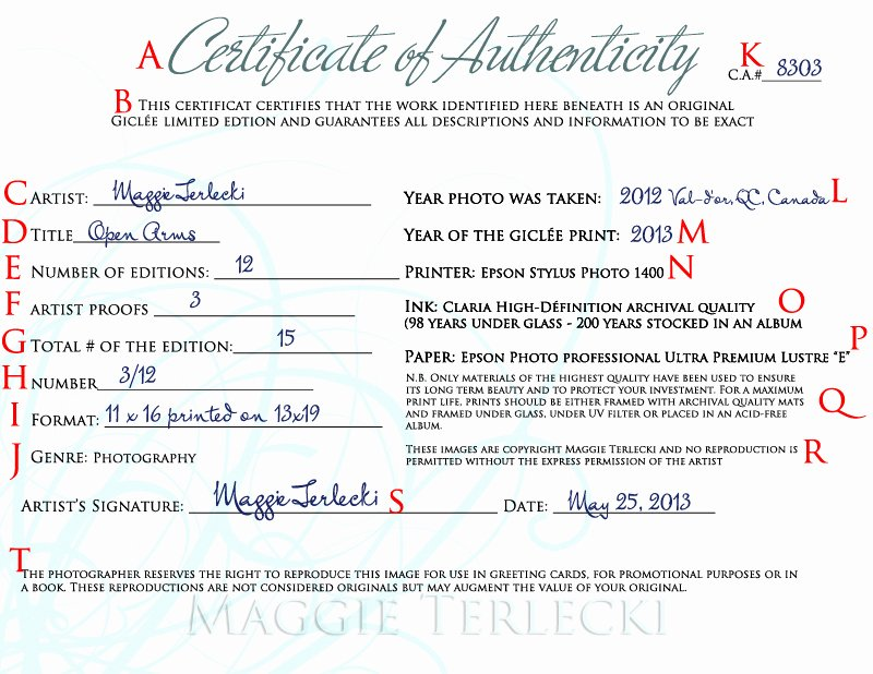 Certificate Of Authenticity Template Free Unique Certificate Authenticity Graphy – Planner Template