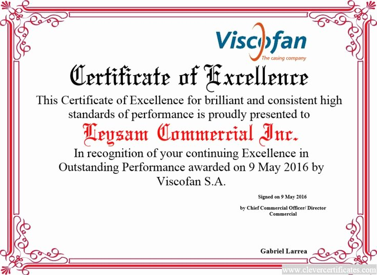 Certificate Of Excellence Template Awesome 17 Best Images About Award Certificate Templates On