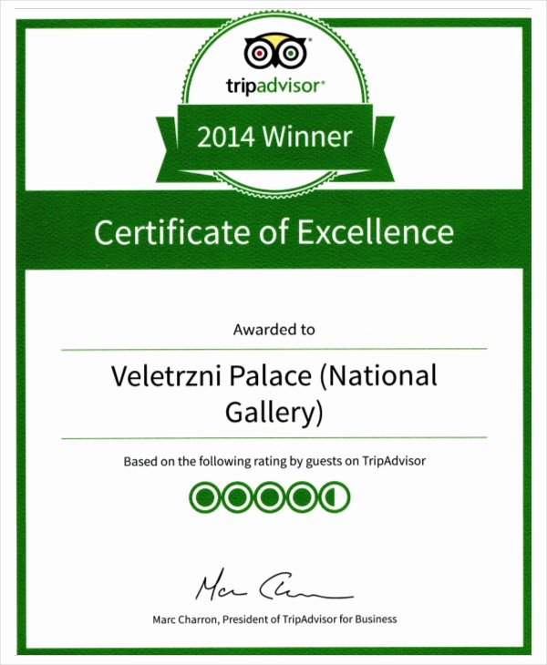 Certificate Of Excellence Template Elegant Excellence Certificate Template 24 Word Pdf Psd