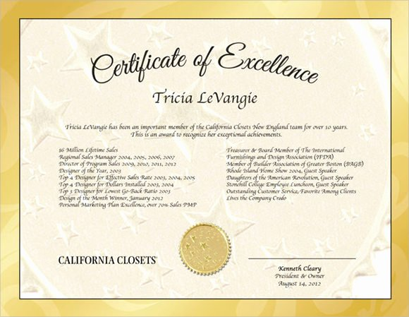Certificate Of Excellence Template Luxury 15 Certificate Of Excellence Templates Sample Word Ai