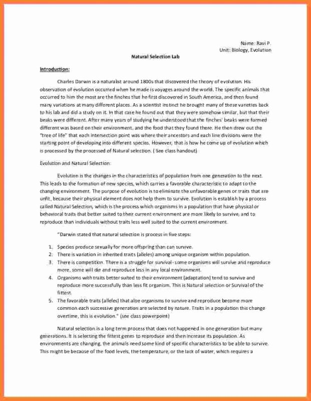 Chemistry Lab Report Template Awesome Chemistry Lab Report Template