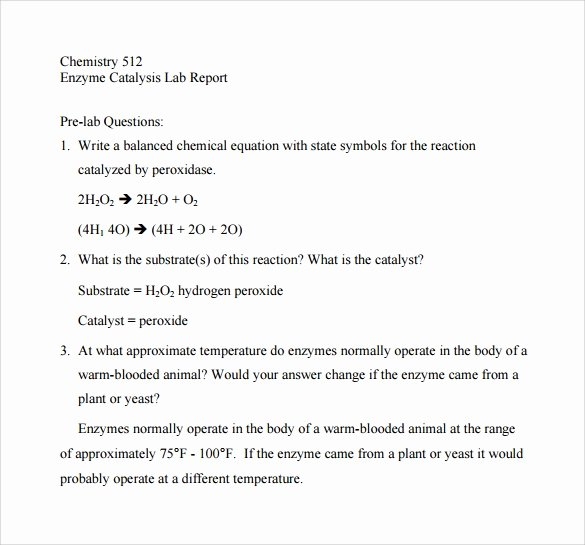 Chemistry Lab Report Template Luxury Free 11 Sample Lab Reports In Google Docs