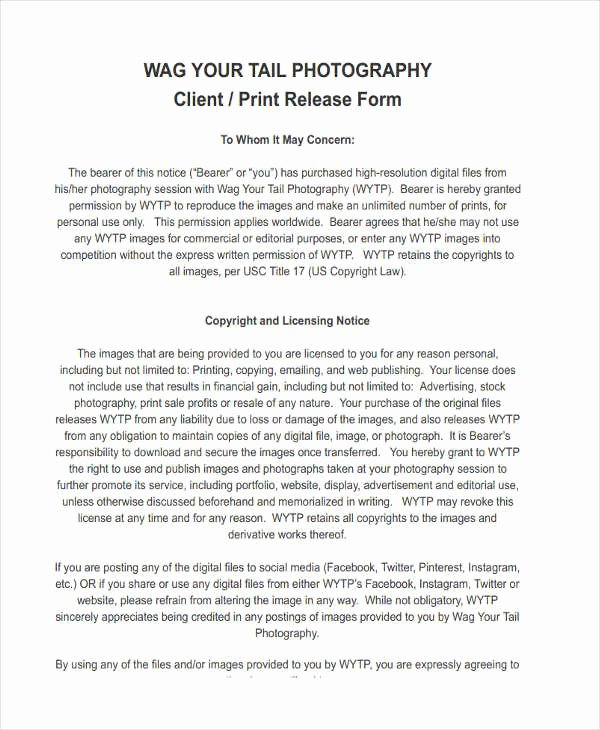 Client Print Release form Template Best Of 20 Free Print Release form