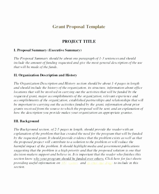 Commercial Insurance Proposal Template Elegant 12 13 Sample Grant Proposal for Small Business
