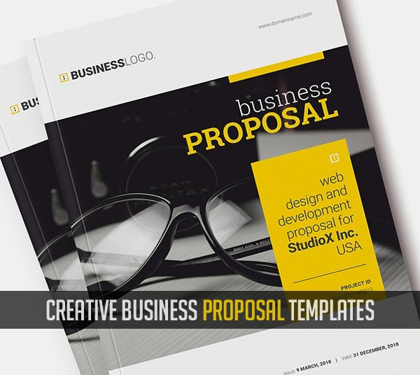 Commercial Insurance Proposal Template Luxury Business Proposal Templates Design