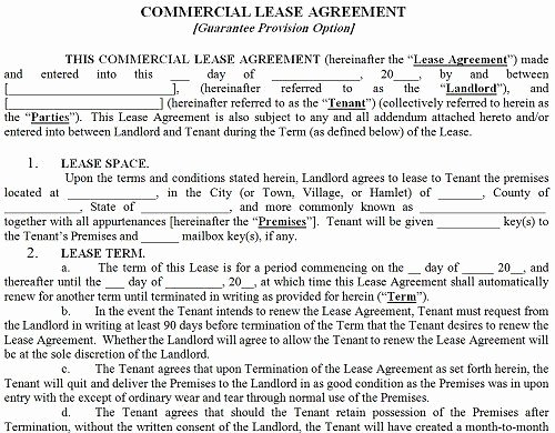 Commercial Lease Proposal Template Beautiful Printable Sample Mercial Lease Agreement form
