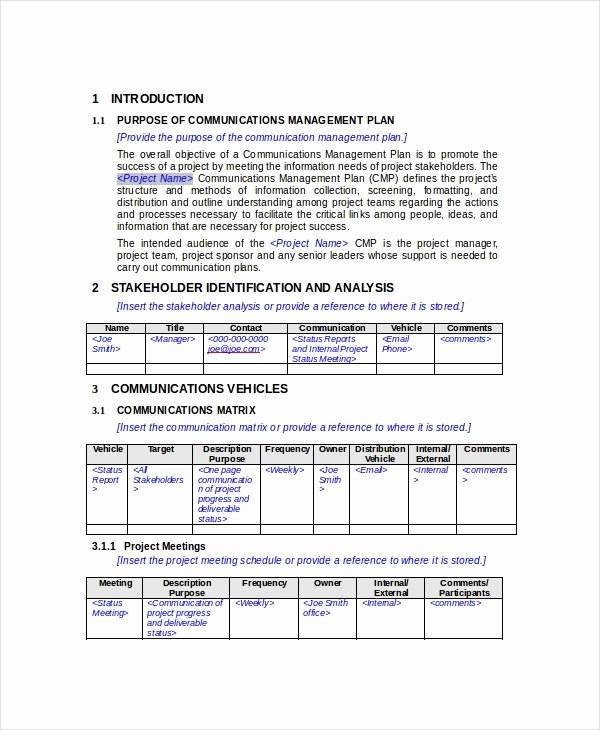 Communications Plan Template Word Best Of Munication Plan 13 Pdf Word Documents Download