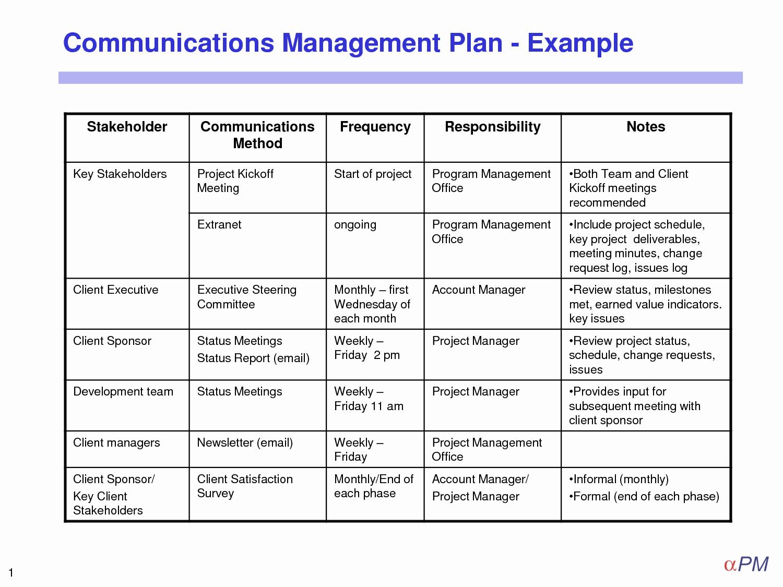 Communications Plan Template Word Luxury Munication Plan Template