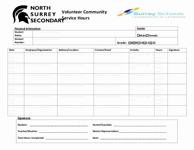Community Service Hours Template Elegant Volunteer Munity Hours Log Sheet