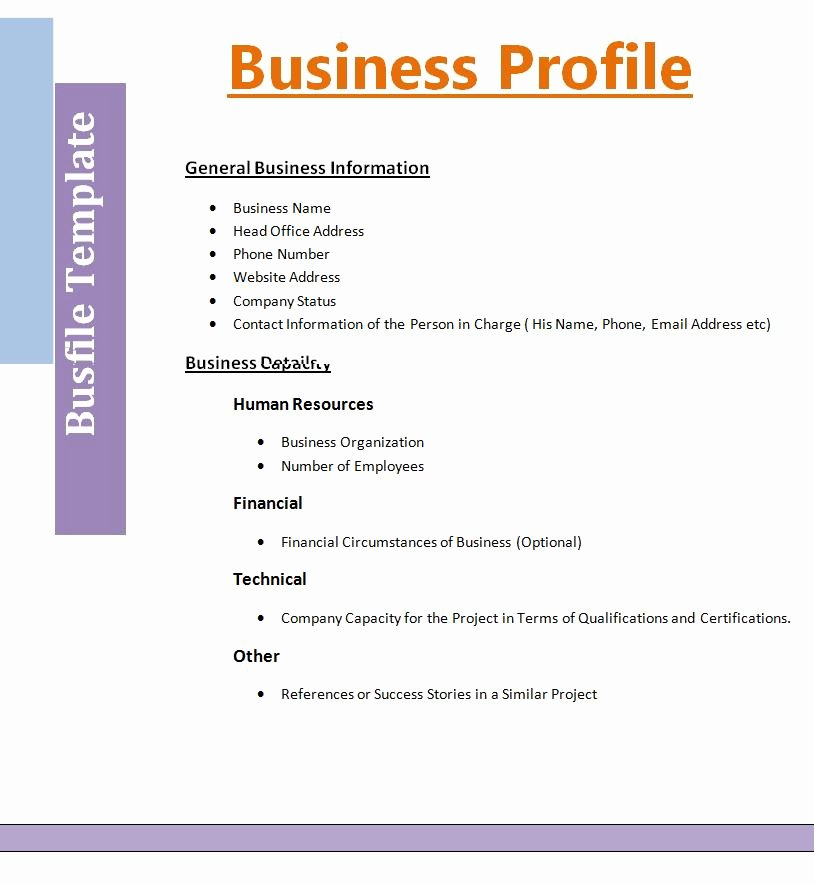 Company Profile Template Word Beautiful 2 Best Business Profile Templates