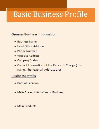 Company Profile Template Word Beautiful Business Profile format