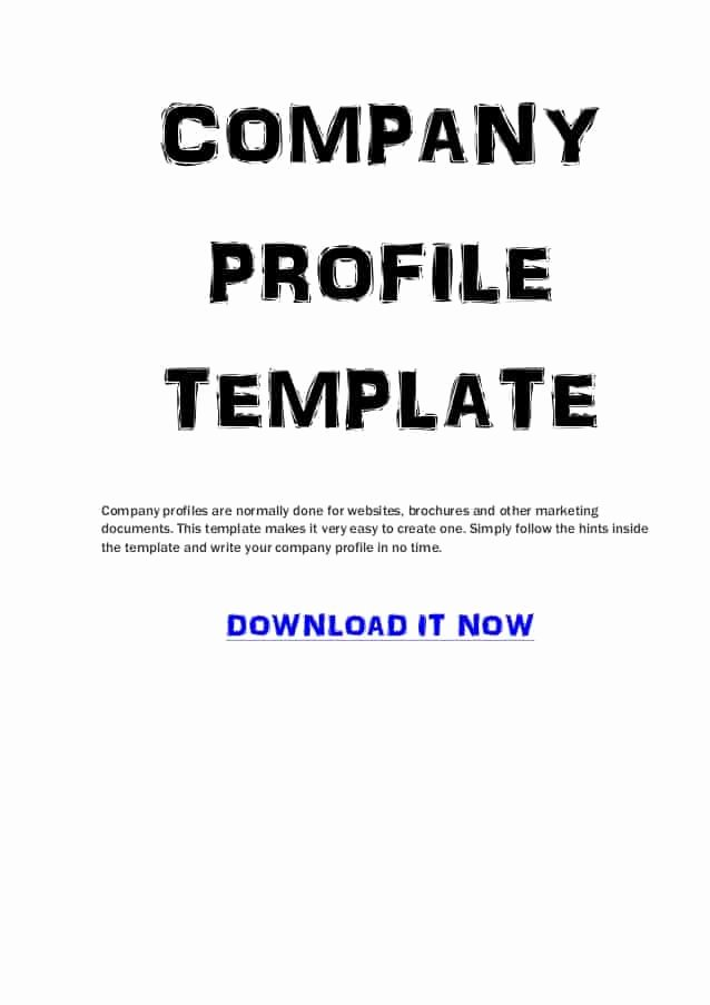 Company Profile Template Word Luxury Pany Profile Templates Word Excel Samples