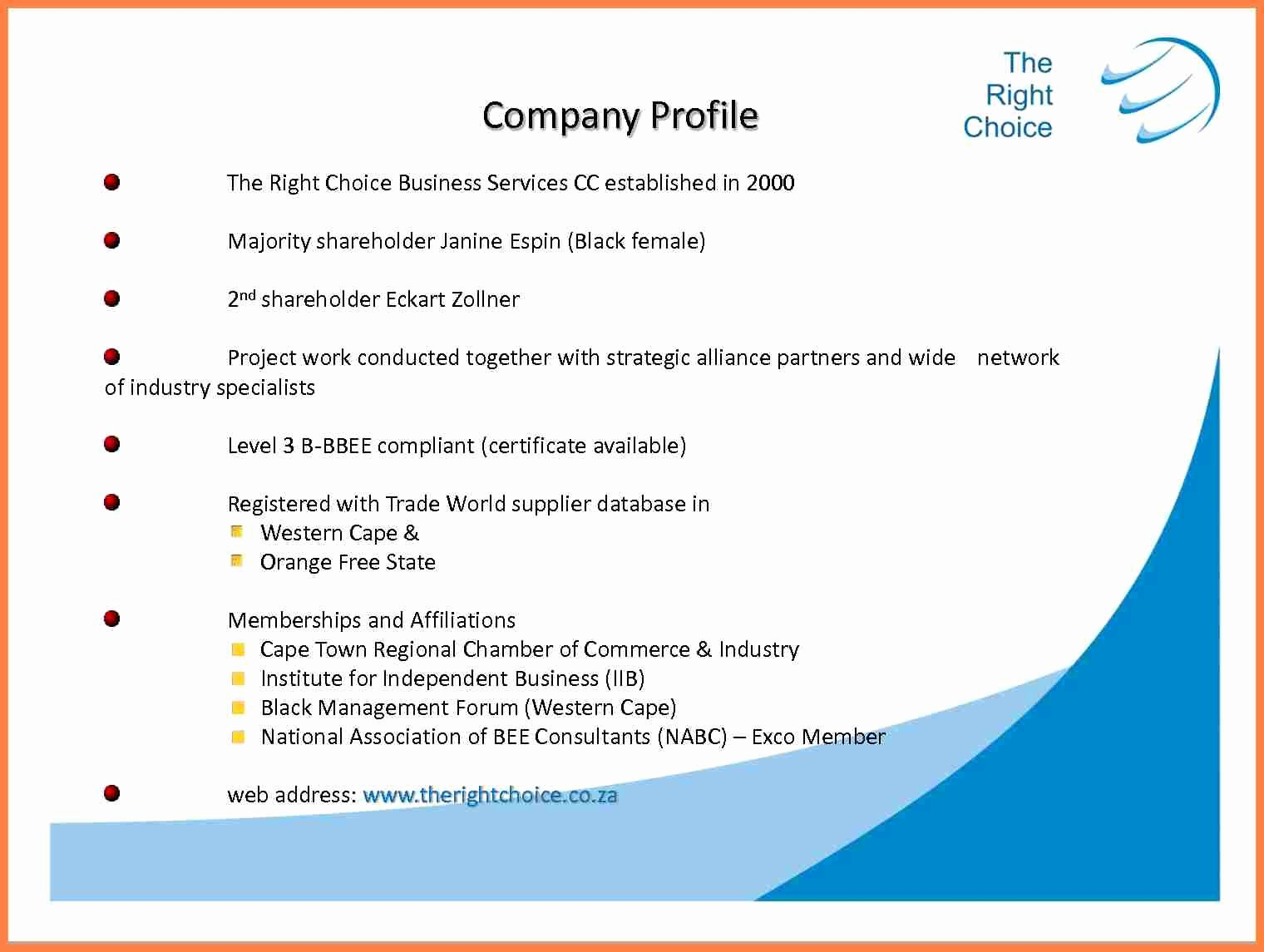 Company Profile Template Word Unique 5 Sample Pany Profile Pdf