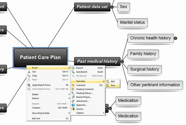 Concept Map Template Nursing New 26 Of Nursing Diagnosis Concept Map Template