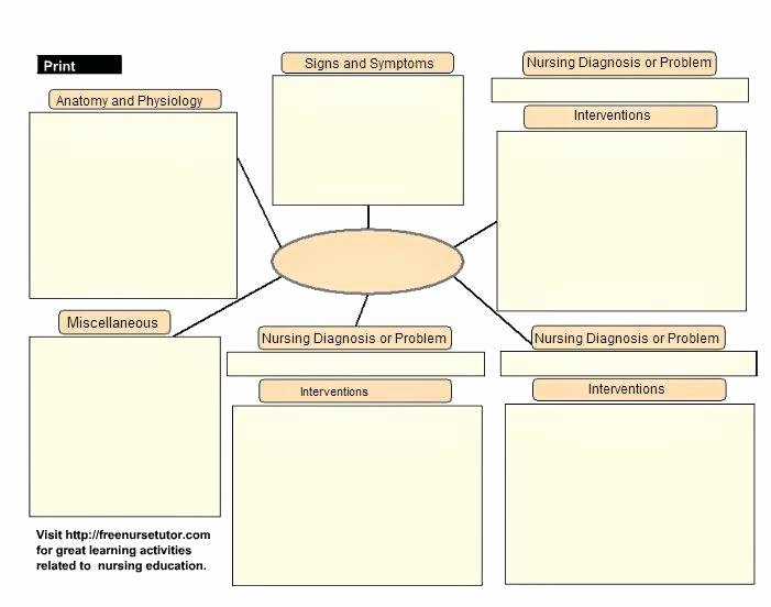 Concept Map Template Nursing New 9 Emergency Care Plan Templates and Examples Pdf Word