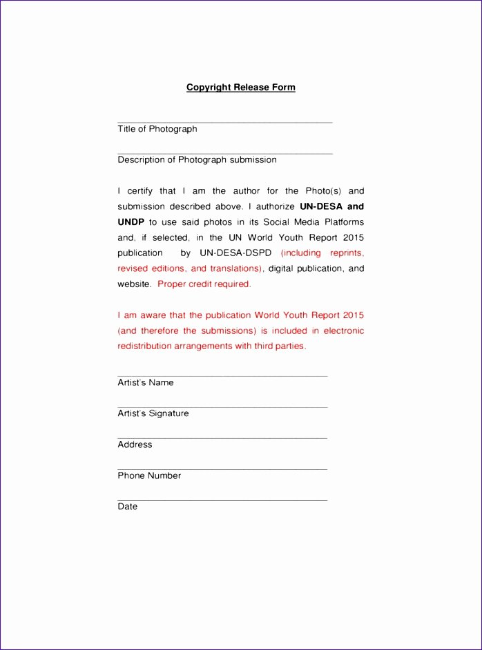 Copyright Release form Template Lovely 10 Amortization Template Excel Exceltemplates